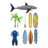 Surfing vector set. Stock Images