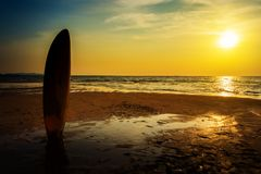 Surfing for water sport outdoor activity lifestyle concept. Silhouette of surfboard on the beach in sea shore at sunset time with beautiful light. water sport Royalty Free Stock Images