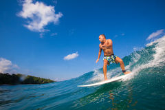 Surfing a Wave.GLand Surf Area.Indonesia. Royalty Free Stock Photography