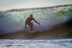 Surfing a Wave. Royalty Free Stock Photography