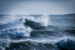 Surfing the Wave Stock Images