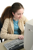 Surfing The Web Stock Images