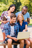 Surfing web together. Stock Photos