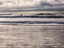 Surfing in winter Stock Photos