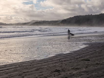 Surfing in winter Royalty Free Stock Photography