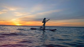Surfing woman is on a surfboard, floating on the water in the sunset. Surfing woman is on a surfboard, floating on the water in the evening stock video footage