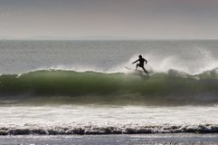 Free Surfing_09 Royalty Free Stock Images - 881729