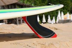 Surfingbräda med kolfena på stranden royaltyfri bild