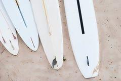 Surfingbrädor i sanden Arkivbild