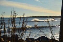 Surfingowa czekanie dla zimnych fala na słonecznym dniu z bohkeh Zdjęcie Royalty Free