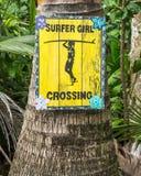 Surfingowiec dziewczyny skrzyżowanie - handpained znak na drzewku palmowym fotografia stock