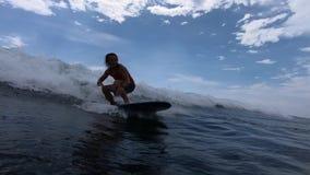Surfingowiec jedzie fala zbiory wideo