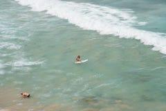 Surfingowiec przy Bondi obrazy royalty free