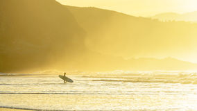 Surfingowiec wchodzić do woda przy zmierzchem Obraz Royalty Free