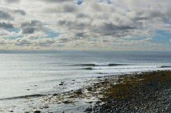 Surfingowowie dzieli fala fotografia stock