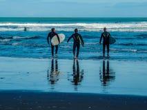 Surfingowowie na Piha plaży, Auckland, Nowa Zelandia obrazy royalty free
