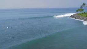 Surfingowowie surfuje na surfboard na błękitnych dennych falach przy tropikalnym wakacje widokiem z lotu ptaka Surfować w oceanu  zdjęcie wideo