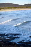 Surfingowowie w dystansowym łapaniu machają blisko rockowego wypusta obraz royalty free