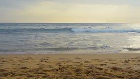 Surfingowowie w oceanie zbiory