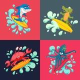 Surfingowów chłodno zwierzęta Fotografia Royalty Free