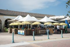 Surfishkoffie stock foto's