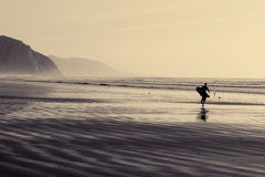 Surfista Foto de Stock Royalty Free