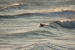 Surfista al crepuscolo Fotografie Stock