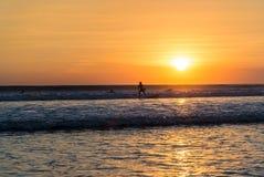 Surfista al tramonto fotografia stock