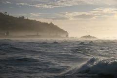Surfista de Sumner Imagens de Stock