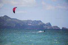 Surfista dell'aquilone di Maui Fotografia Stock