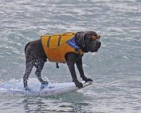Surfista di giorno piovoso Fotografia Stock Libera da Diritti