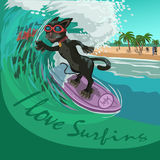 Surfista do gato preto na onda Imagem de Stock
