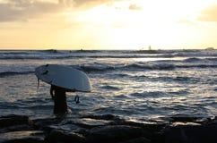 Surfista do por do sol em Honolulu Imagens de Stock Royalty Free