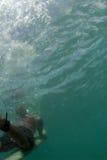 Surfista Duckdiving Fotografie Stock Libere da Diritti