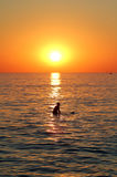 Surfista e tramonto Fotografie Stock