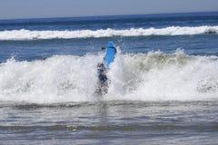 Surfista eliminato dall'onda fotografie stock libere da diritti
