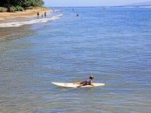 Surfista, Maui, Havaí Foto de Stock