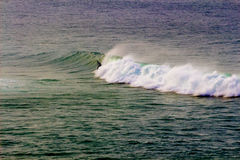 Surfista na onda do arco-íris Imagens de Stock Royalty Free