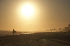 Surfista na praia Imagens de Stock Royalty Free