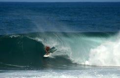 Surfista nel barilotto, puntello del nord, Hawai Immagine Stock Libera da Diritti