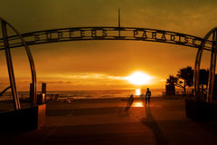 Surfista nel paradiso la Gold Coast Queensland Australia dei surfisti Fotografia Stock Libera da Diritti