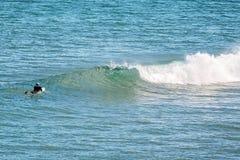 Surfista no berçário da baleia da praia de Logan fotografia de stock
