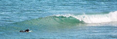 Surfista no ber??rio da baleia da praia de Logan imagens de stock royalty free