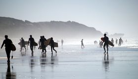Surfistas Imagem de Stock