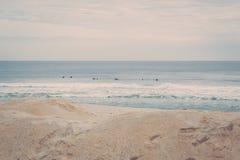 Surfistas de New-jersey Fotos de Stock Royalty Free