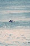 Surfistas de New-jersey Fotografia de Stock