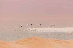 Surfistas de New-jersey Imagens de Stock Royalty Free