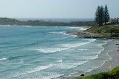 Surfistas distantes em uma praia limitada por associações e por pinheiros da rocha Fotos de Stock