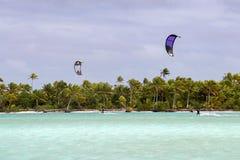 Surfistas do papagaio em Ilhas Cook polinésias tropicais do aitutaki da praia Foto de Stock Royalty Free