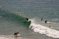 Surfistas no mar Imagens de Stock